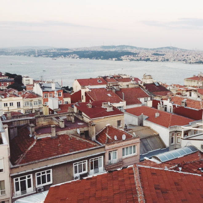 This was the view from our rooftop terrace restaurant, Cat 5. Honestly the food wasn't amazing, but the view over the Bosphorous was a cool way to finish our first full day in Istanbul.